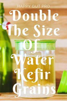 Tried and tested tips from a Master Water Kefir Brewer to boost your water kefir grain growth. Kombucha, Kefir Recipes, Raw Food Recipes, Healthy Recipes, Kefir Probiotic, Kefir Yogurt, Fermentation Recipes, Mets, Fermented Foods