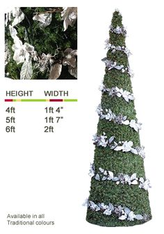 Ambius Trees: Cone Tree
