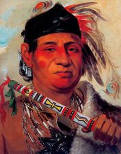 Mah-kée-mee-teuv, Grizzly Bear, Chief of the Tribe by George Catlin / American Art Native American Artists, Native American History, American Indians, Menominee Tribe, Cree Indians, Natural Man, First Nations, Arm, Native Americans