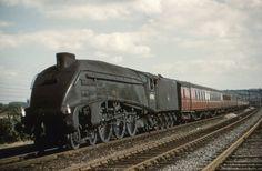 Steam Trains Uk, Steam Railway, British Rail, Steamers, Steam Engine, Steam Locomotive, Paddle, Diesel, Past