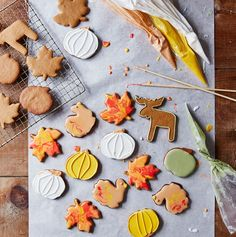 Autumn Cookie Cutter Set