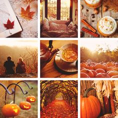 I'm an autumn person. Give me a quite, cozy spot with a view of trees with colorful leaves on a crisp November day, fuzzy socks, a warm drink, and a good book, and I'll be in all my glory.