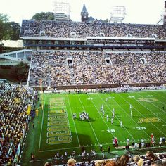 Bobby Dodd Stadium. Named for the coach who led the Yellow Jackets to a national title in 1954!