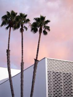 Pink sky  http://www.bijouxmrm.com/ https://www.facebook.com/marc.rm.161 https://www.facebook.com/Bijoux-MRM-388443807902387/ https://www.facebook.com/La-Taillerie-du-Corail-1278607718822575/ https://fr.pinterest.com/bijouxmrm/ https://www.instagram.com/bijouxmrm/