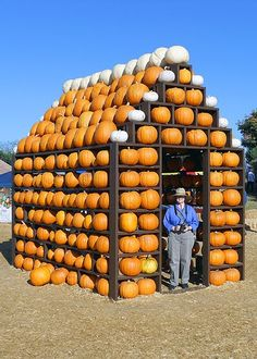 The Pumpkin House ~ Underwood Family Farms in Moorpark for the Fall Harvest Festival