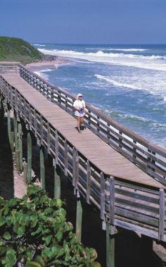 The boardwalk at John D. MacArthur State Park