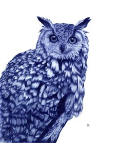 Owl by Sarah Esteje (awesome Ballpoint Pen Illustration) Biro Art, Ballpoint Pen Drawing, Ballpen Drawing, Stylo Art, Owl Illustration, Design Illustrations, Inspiration Art, Amazing Drawings, Amazing Art