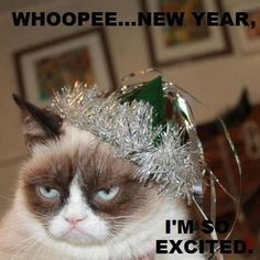grumpy cat for more new years cats visit httpswwwfacebook