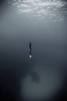 Fearless ~this reminds me of my descent while scuba diving in Bonaire 100 feet below the surface.