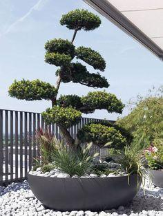 Swisspearl Garden & Design Furniture and Accessories   Planters