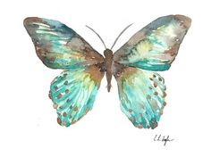 Blue Teal Watercolor Butterfly, Original Watercolor Painting, 8x10, brown, green, aqua