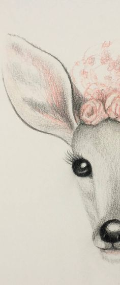 Original Animal Drawing by Catherine Wallace Realistic Animal Drawings, Baby Animal Drawings, Animal Sketches, Art Drawings Sketches Simple, Cute Sketches, Cute Drawings, Disney Drawings, Cartoon Drawings, Deer Illustration