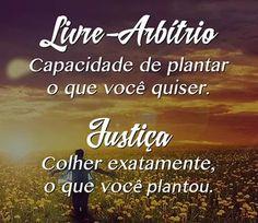 """""""Educar é semear com sabedoria e colher com paciência."""" Augusto Cury.!..."""