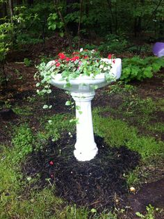 Re-purpose old sink for planter