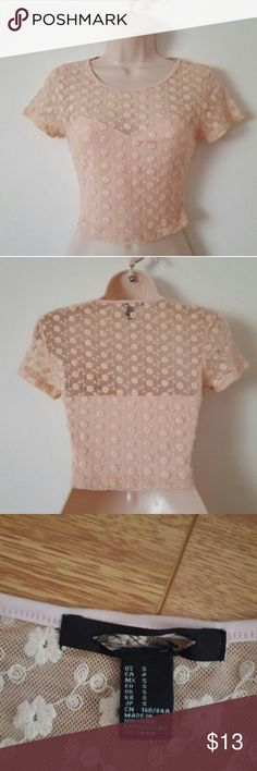 Pale Pink Floral Crop Top Size Small  New without Tag  Brand is Unknown Tops Crop Tops