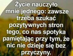 Motto, Texts, Lol, Thoughts, Humor, Words, Poland, Funny, Quotes