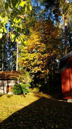 Autumn in Bergslagen, Sweden