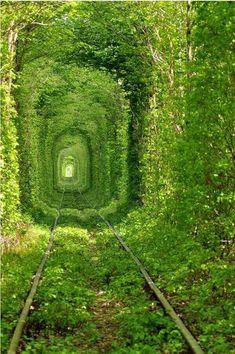 Os dejamos con el llamado ''Tunel del amor'', Ucrania. ¡Feliz sábado!