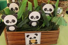 Urso Panda!! Panda Birthday, One Year Birthday, 11th Birthday, Birthday Parties, Panda Decorations, Baby Shower Decorations, Cute Panda Cartoon, Panda Baby Showers, Panda Party