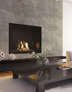 1000 ideas about gas fireplace inserts on pinterest for Modern gas fireplace price