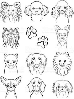 Resultado de imagem para contorno de animais para desenhar