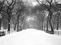 Check out this guest post on our EventSorbet Blog: New York: What to See & Where to be Seen   #NYC #PlacestoSee #Inspiratoin #CentralPark #EventSorbet #Busylife #CantStopWontStop #ChasingExperiences #WhiteWinter #Snowflakes