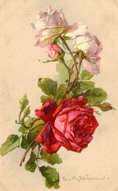 Catherine Klein, Vintage Rosen, Vintage Art, Vintage Prints, Victorian Flowers, Vintage Flowers, Art Floral, Illustration Blume, Rose Pictures
