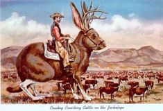 Cowboy Punching Cattle on the Jackalope; date unknown. Antelope Horns, Mothman, Jack Rabbit, Photocollage, Western Art, Fantasy Creatures, Vintage Cards, Art Music, Vintage Postcards