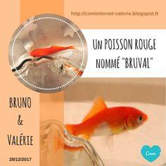 Bruno TASCON (Ecrivain Plasticien) - Ateliers Créatifs - Lorient Vannes Paris: ⏬ Echanges de [LIENS]