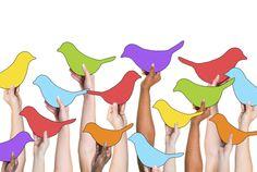 shutterstock_217491601 Social Networking Concept Birds