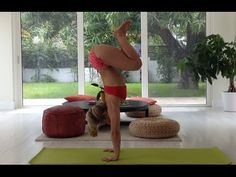 Killer core and arm strength workout for handstand - Yoga Handstand Jump, 10 Minute Class with Kino Kino Yoga, Yoga Inversions, Yoga Handstand, Ashtanga Yoga, My Yoga, Yoga Sequences, Yoga Poses, Handstands, Yoga Fitness