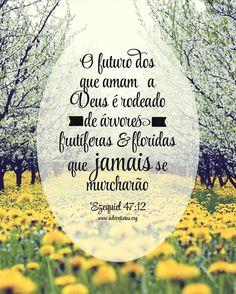 BOM DIA LANÇA O TEU PÃO...                       Eclesiastes 11:1                      Lançar o nosso pão sobre as águas  é um desafio à nossa fé. Não sabemos onde será semeado, quando frutificará, nem qual a produção que dará. Só nos é prometido que, muitos dias depois, o acharemos, ele é nosso e a nós voltará.                     Crês tu isto? Ou és avaro, sovina e reténs  só para ti o pão que deveria ser espalhado e semeado por toda a parte? No armazém da tua avareza, a riqueza apodrecerá