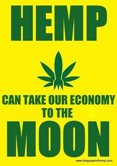 Hemp Can Take Our Economy to the Moon Funny Weed Quotes, Weed Memes, Weed Humor, Hemp Recipe, Treating Fibromyalgia, Want To Be Loved, Plant Species, Medical Cannabis, Ganja