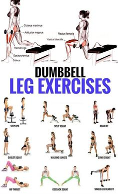 Top 5 Dumbbell Exercises for A Leg-Destroying Workout . - Top 5 Dumbbell Exercises for A Leg-Destroying Workout - Dumbbell Leg Workout, Sixpack Workout, Weighted Leg Workout, Hamstring Workout, Leg Butt Workout, Plyometric Workout, Workout With Dumbbells, Leg Muscle Exercises, Workout Plans