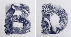 I Created A Complete Alphabet Inspired By Flora And Fauna | Bored Panda