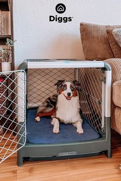 Our dog crates were made with the safety of pups in mind. The unique, diamond-shaped mesh pattern and solid, single-piece frame prevent injury to jaws and paws.
