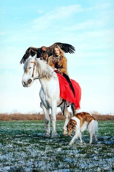 Hunting with a borzoi and a falcon in Russia. #animals #dogs #borzoi