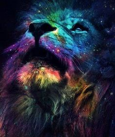 Lion in space