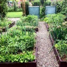 Edible Garden Landscape Ideas_45