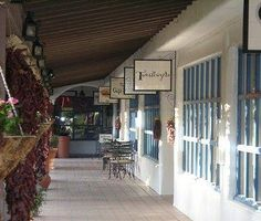 Looking for something to do in Palm Springs?  Visit some of the amazing shops on El Paseo in Palm Desert.  Great one of a kind shops