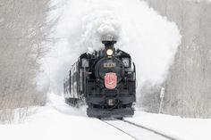 Snow Train - In winter season, steam locomotive run through Kushiro Marsh in Hokkaido of Japan.