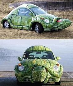 For those who have dreamt of driving a turtle