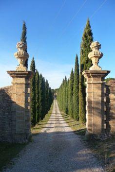 gorgeous entrance to long driveway