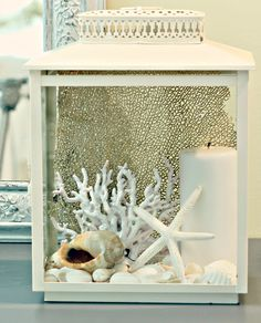 Displaying shells and sea treasures in a lantern. 30 Seashell Display Ideas: http://www.completely-coastal.com/2013/02/seashell-collection.html