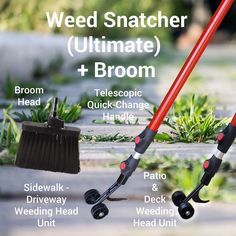 Most current Photos vegetable gardening tools Ideas Obtaining started in the back garden somebody in charge of can be a complicated task. There may be a great de