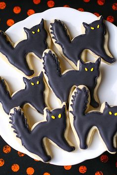 black cat cookies  now this reminds me of ECONOMETRICS