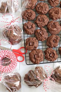 Double Chocolate Chunk Cookies. A soft, chewy double chocolate chunk cookie - a perfect treat for the holidays.