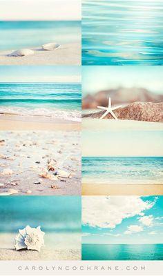 Beach Photography Prints & Canvas Art by CarolynCochrane.com | Aqua Turquoise Coastal Wall Decor