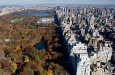 New York City's Central Park along Fifth Avenue is viewed in this aerial photograph from a helicopter over New York on November 11, 2008. (SAUL LOEB/AFP/Getty Images) #