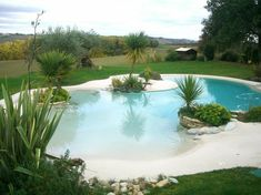 Beautiful backyard pool Beautiful backyard pool The post Beautiful backyard pool & Diy garten appeared first on Natural swimming pools . Luxury Swimming Pools, Natural Swimming Pools, Swimming Pools Backyard, Dream Pools, Swimming Pool Designs, Backyard Landscaping, Swimming Ponds, Natural Pools, Landscaping Ideas